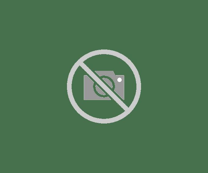 Key Padlock - for Bulk Storage Locker Door - with (2) Keys